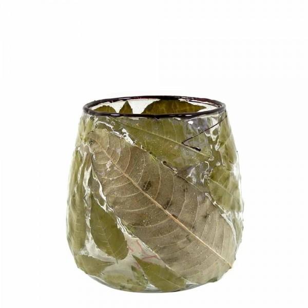 Glaswindlicht mit Blättern präpariert (1/2 Stück)